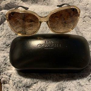 Fashionable Coach Sunglasses